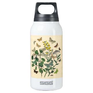 Vintage Print - Lepidoptera - Moths & Butterflies Insulated Water Bottle