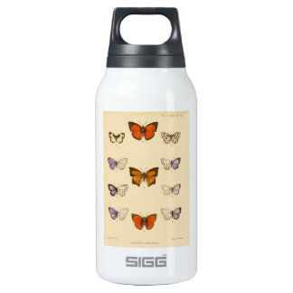 Vintage Print - New Indian lepidoptera Insulated Water Bottle