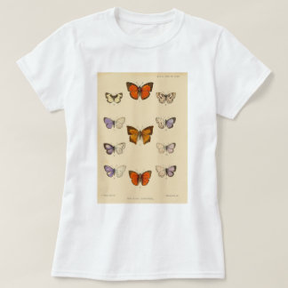 Vintage Print - New Indian lepidoptera T-Shirt