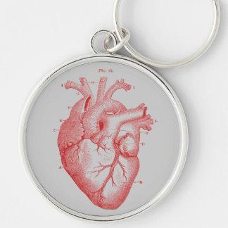 Vintage Print Red Anatomical Heart Metal Key Ring Keychain