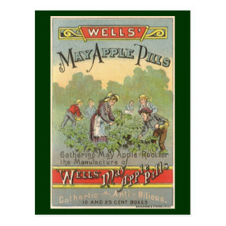 Vintage Product Label Art, Wells May Apple Pills Postcard