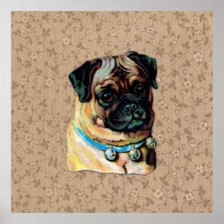 Vintage Pug Dog Print