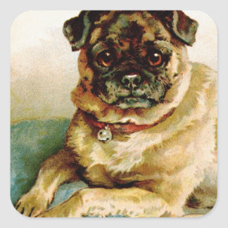 Vintage Pug Love Square Sticker