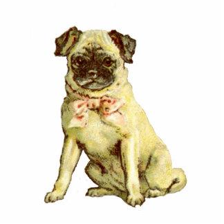 Vintage Pug Puppy Pin Photo Sculpture Button