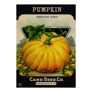 Vintage Pumpkin Seed Packet - Print