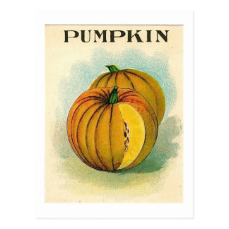 vintage pumpking seed packet postcard