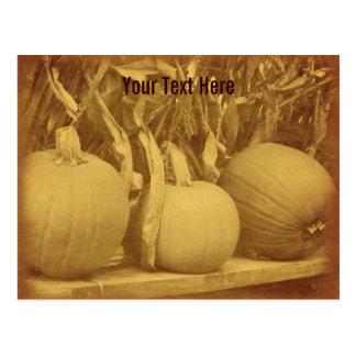 Vintage Pumpkins Cornstalks Customizable Postcard