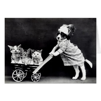 Vintage Puppies and Kittens Note Cards