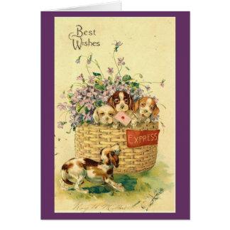 Vintage - Puppies - Best Wishes Card