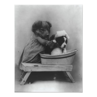 Vintage Puppies Photograph Card