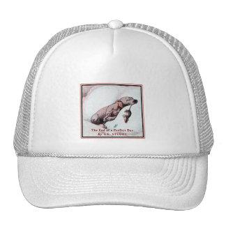 Vintage Puppy Art:  End of Day Trucker Hat