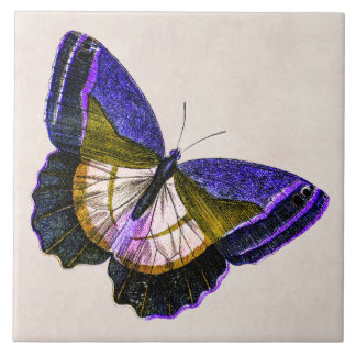 Vintage Purple and Gold Butterfly Illustration Ceramic Tile