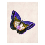 Vintage Purple and Gold Butterfly Illustration Photo Print