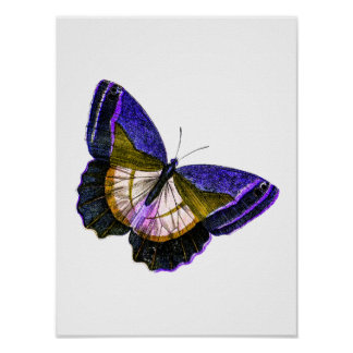Vintage Purple and Gold Butterfly Illustration Poster