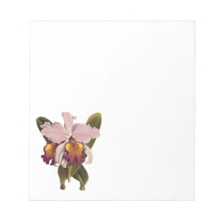 Vintage Purple Cattleya Orchid, Tropical Flowers Notepad