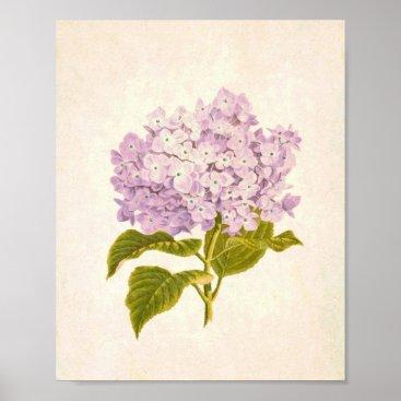 Art Themed Vintage Purple Lilac Floral Print