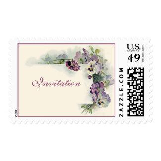 Vintage purple pansies postage