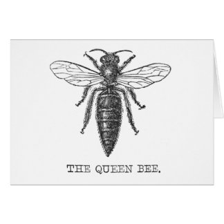 Vintage Queen Bee Illustration Card
