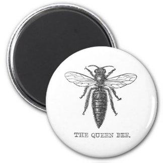 Vintage Queen Bee Illustration Magnets
