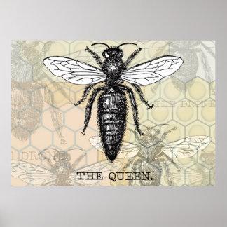 Vintage Queen Bee Illustration Poster