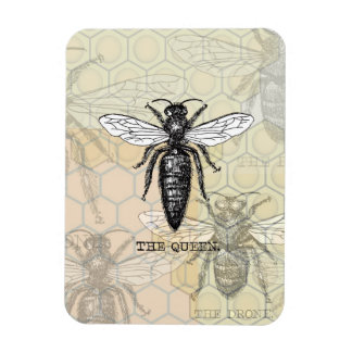 Vintage Queen Bee Illustration Vinyl Magnets
