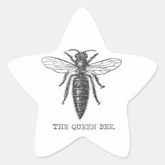 Vintage Queen Bee Illustration Star Sticker