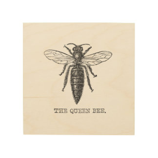 Vintage Queen Bee Illustration Wood Print