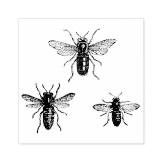 Vintage Queen Bee & Working Bees Illustration Rubber Stamp