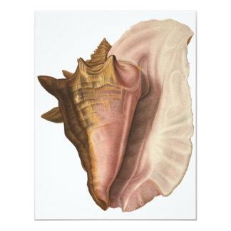 Vintage Queen Conch Seashell Shell Invitation