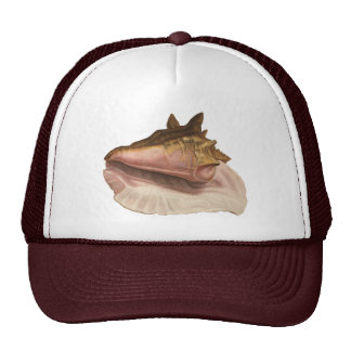 Vintage Queen Conch Seashell Shell, Marine Animal Trucker Hat