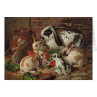 Vintage - Rabbit Family Eating Flowers, Card