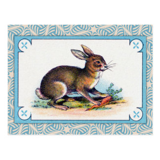 Vintage Rabbit Print Postcard