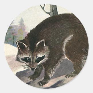 Vintage Raccoon, Wild Animal Forest Creatures Classic Round Sticker