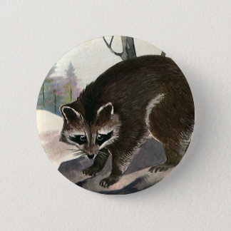 Vintage Raccoon, Wild Animal Forest Creatures Pinback Button