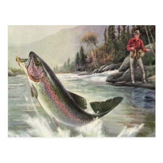 Vintage Rainbow Trout Fish, Fisherman Fishing Postcard