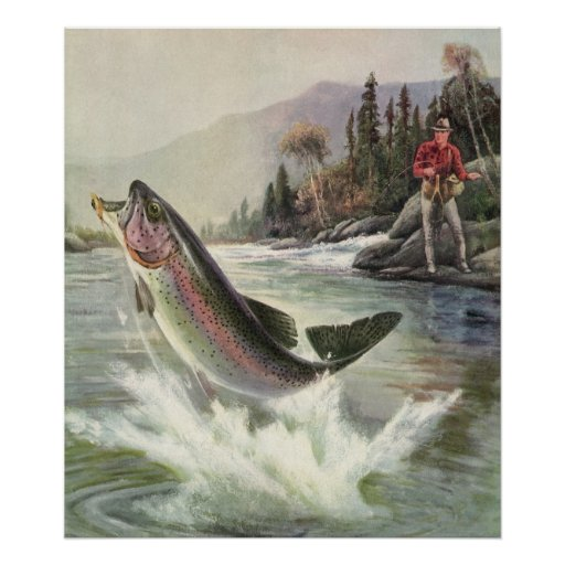 Vintage Rainbow Trout  Fish Fisherman Fishing Print