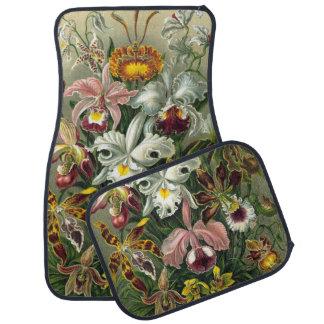 Vintage Rainforest Orchids, Flowers, Ernst Haeckel Floor Mat