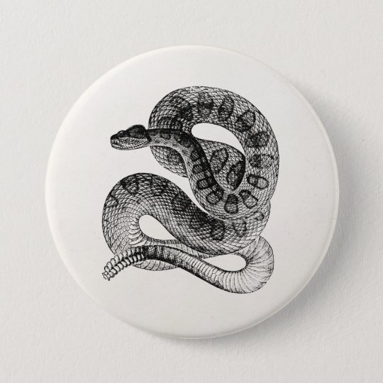 vintage rattlesnake reptile snake template button zazzle com