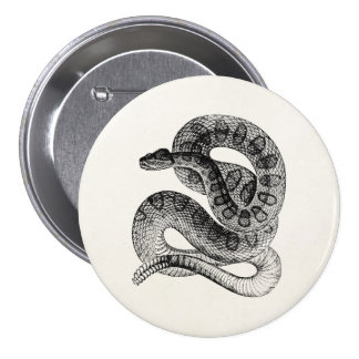 Vintage Rattlesnake Reptile Snake Template Pinback Buttons