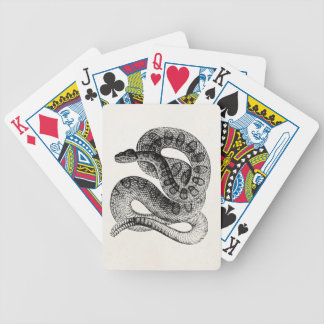 Vintage Rattlesnake Reptile Snake Template Bicycle Playing Cards