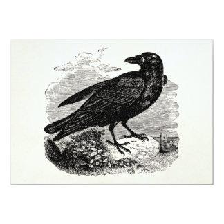 Vintage Raven Black Bird Crow Personalized Birds Card
