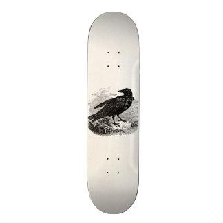 Vintage Raven Black Bird Crow Personalized Birds Skateboard Deck