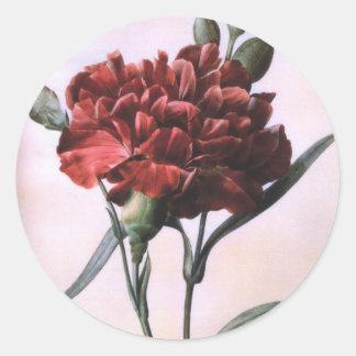 Vintage Red Carnation Classic Round Sticker
