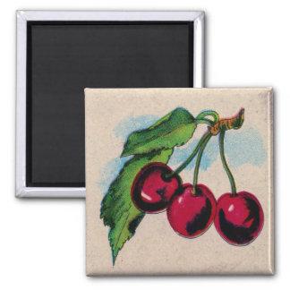Vintage Red Cherries Magnet