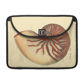 Vintage Red Conch Shell MacBook Pro Sleeve