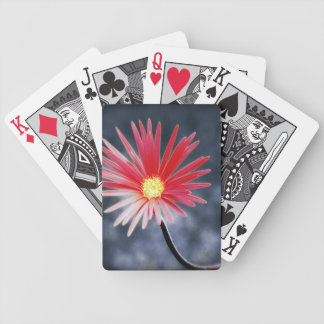 Vintage Red Daisy Flowers Bicycle Playing Cards