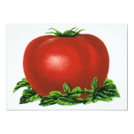 Vintage Red Ripe Tomato, Food Fruits Vegetables 5x7 Paper Invitation Card