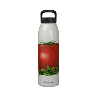 Vintage Red Ripe Tomato, Food Fruits Vegetables Drinking Bottle