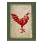 Vintage Red Rooster Shabby Chic Grunge Chicken Post Card