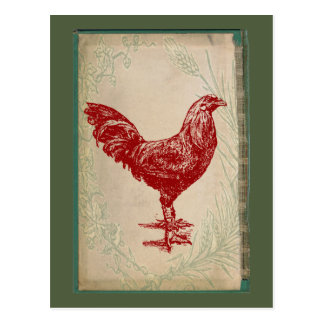 Vintage Red Rooster Shabby Chic Grunge Chicken Postcard